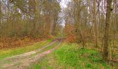 Randonnée Marche SAINT-JEAN-AUX-BOIS - en forêt de Compiègne_12_le Grand Octogone - Photo 130