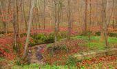 Randonnée Marche SAINT-JEAN-AUX-BOIS - en forêt de Compiègne_12_le Grand Octogone - Photo 7