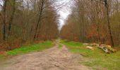 Randonnée Marche SAINT-JEAN-AUX-BOIS - en forêt de Compiègne_12_le Grand Octogone - Photo 110