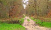 Randonnée Marche SAINT-JEAN-AUX-BOIS - en forêt de Compiègne_12_le Grand Octogone - Photo 104