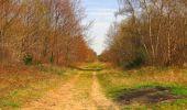 Randonnée Marche SAINT-JEAN-AUX-BOIS - en forêt de Compiègne_12_le Grand Octogone - Photo 82