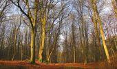 Randonnée Marche SAINT-JEAN-AUX-BOIS - en forêt de Compiègne_12_le Grand Octogone - Photo 28