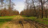 Randonnée Marche SAINT-JEAN-AUX-BOIS - en forêt de Compiègne_12_le Grand Octogone - Photo 89