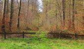 Randonnée Marche SAINT-JEAN-AUX-BOIS - en forêt de Compiègne_12_le Grand Octogone - Photo 139