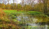 Randonnée Marche SAINT-JEAN-AUX-BOIS - en forêt de Compiègne_12_le Grand Octogone - Photo 69
