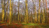 Randonnée Marche SAINT-JEAN-AUX-BOIS - en forêt de Compiègne_12_le Grand Octogone - Photo 25