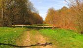 Randonnée Marche SAINT-JEAN-AUX-BOIS - en forêt de Compiègne_12_le Grand Octogone - Photo 60
