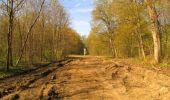 Randonnée Marche SAINT-JEAN-AUX-BOIS - en forêt de Compiègne_12_le Grand Octogone - Photo 62