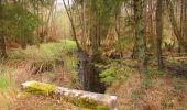 Randonnée Marche SAINT-JEAN-AUX-BOIS - en forêt de Compiègne_12_le Grand Octogone - Photo 122