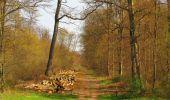 Randonnée Marche SAINT-JEAN-AUX-BOIS - en forêt de Compiègne_12_le Grand Octogone - Photo 75