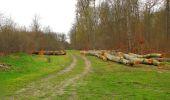 Randonnée Marche SAINT-JEAN-AUX-BOIS - en forêt de Compiègne_12_le Grand Octogone - Photo 114