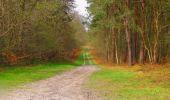 Randonnée Marche SAINT-JEAN-AUX-BOIS - en forêt de Compiègne_12_le Grand Octogone - Photo 133