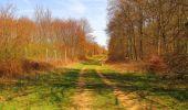 Randonnée Marche SAINT-JEAN-AUX-BOIS - en forêt de Compiègne_12_le Grand Octogone - Photo 81
