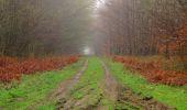 Randonnée Marche SAINT-JEAN-AUX-BOIS - en forêt de Compiègne_12_le Grand Octogone - Photo 10