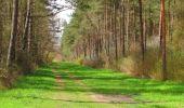 Randonnée Marche SAINT-JEAN-AUX-BOIS - en forêt de Compiègne_12_le Grand Octogone - Photo 100