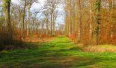 Randonnée Marche SAINT-JEAN-AUX-BOIS - en forêt de Compiègne_12_le Grand Octogone - Photo 36