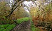 Randonnée Marche SAINT-JEAN-AUX-BOIS - en forêt de Compiègne_12_le Grand Octogone - Photo 12