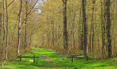 Randonnée Marche SAINT-JEAN-AUX-BOIS - en forêt de Compiègne_12_le Grand Octogone - Photo 56