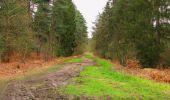 Randonnée Marche SAINT-JEAN-AUX-BOIS - en forêt de Compiègne_12_le Grand Octogone - Photo 119