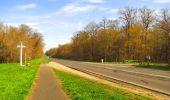 Randonnée Marche SAINT-JEAN-AUX-BOIS - en forêt de Compiègne_12_le Grand Octogone - Photo 58