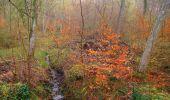 Randonnée Marche SAINT-JEAN-AUX-BOIS - en forêt de Compiègne_12_le Grand Octogone - Photo 17