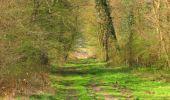 Randonnée Marche SAINT-JEAN-AUX-BOIS - en forêt de Compiègne_12_le Grand Octogone - Photo 64