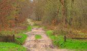 Randonnée Marche SAINT-JEAN-AUX-BOIS - en forêt de Compiègne_12_le Grand Octogone - Photo 106