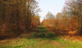 Randonnée Marche SAINT-JEAN-AUX-BOIS - en forêt de Compiègne_12_le Grand Octogone - Photo 42