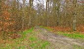 Randonnée Marche SAINT-JEAN-AUX-BOIS - en forêt de Compiègne_12_le Grand Octogone - Photo 108