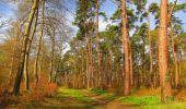 Randonnée Marche SAINT-JEAN-AUX-BOIS - en forêt de Compiègne_12_le Grand Octogone - Photo 48