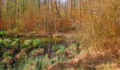 Randonnée Marche SAINT-JEAN-AUX-BOIS - en forêt de Compiègne_12_le Grand Octogone - Photo 38