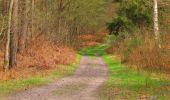 Randonnée Marche SAINT-JEAN-AUX-BOIS - en forêt de Compiègne_12_le Grand Octogone - Photo 135
