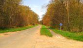Randonnée Marche SAINT-JEAN-AUX-BOIS - en forêt de Compiègne_12_le Grand Octogone - Photo 88