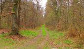 Randonnée Marche SAINT-JEAN-AUX-BOIS - en forêt de Compiègne_12_le Grand Octogone - Photo 109