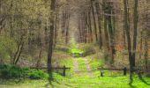 Randonnée Marche SAINT-JEAN-AUX-BOIS - en forêt de Compiègne_12_le Grand Octogone - Photo 77