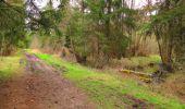 Randonnée Marche SAINT-JEAN-AUX-BOIS - en forêt de Compiègne_12_le Grand Octogone - Photo 123