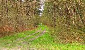 Randonnée Marche SAINT-JEAN-AUX-BOIS - en forêt de Compiègne_12_le Grand Octogone - Photo 134