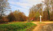 Randonnée Marche SAINT-JEAN-AUX-BOIS - en forêt de Compiègne_12_le Grand Octogone - Photo 39