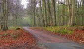 Randonnée Marche SAINT-JEAN-AUX-BOIS - en forêt de Compiègne_12_le Grand Octogone - Photo 20