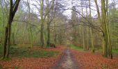 Randonnée Marche SAINT-JEAN-AUX-BOIS - en forêt de Compiègne_12_le Grand Octogone - Photo 24