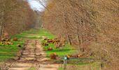 Randonnée Marche SAINT-JEAN-AUX-BOIS - en forêt de Compiègne_12_le Grand Octogone - Photo 95