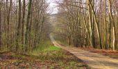 Randonnée Marche SAINT-JEAN-AUX-BOIS - en forêt de Compiègne_12_le Grand Octogone - Photo 29
