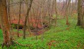 Randonnée Marche SAINT-JEAN-AUX-BOIS - en forêt de Compiègne_12_le Grand Octogone - Photo 6