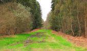 Randonnée Marche SAINT-JEAN-AUX-BOIS - en forêt de Compiègne_12_le Grand Octogone - Photo 118