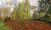 Randonnée Marche SAINT-JEAN-AUX-BOIS - en forêt de Compiègne_12_le Grand Octogone - Photo 23