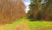 Randonnée Marche SAINT-JEAN-AUX-BOIS - en forêt de Compiègne_12_le Grand Octogone - Photo 97