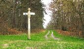 Randonnée Marche SAINT-JEAN-AUX-BOIS - en forêt de Compiègne_12_le Grand Octogone - Photo 128