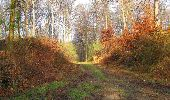 Randonnée Marche SAINT-JEAN-AUX-BOIS - en forêt de Compiègne_12_le Grand Octogone - Photo 30