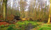 Randonnée Marche SAINT-JEAN-AUX-BOIS - en forêt de Compiègne_12_le Grand Octogone - Photo 26