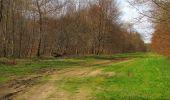 Randonnée Marche SAINT-JEAN-AUX-BOIS - en forêt de Compiègne_12_le Grand Octogone - Photo 91